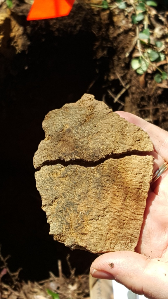 Two fabric impressed sherds that fit together. A truly exciting find!