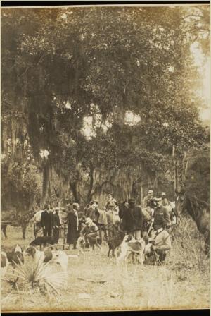 Deer Drive, 1907