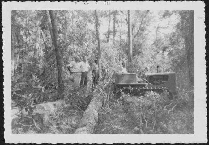 Nolan Taylor supervises Timber Harvesting